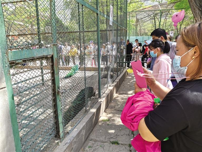 10月1日前兰州野生动物园计划向市民开放