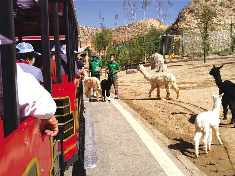 兰州野生动物园将于9月26日试开园