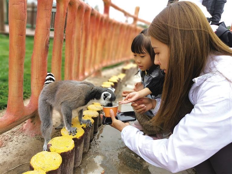 開園首日 蘭州野生動物園迎來近(jin)三千(qian)游客