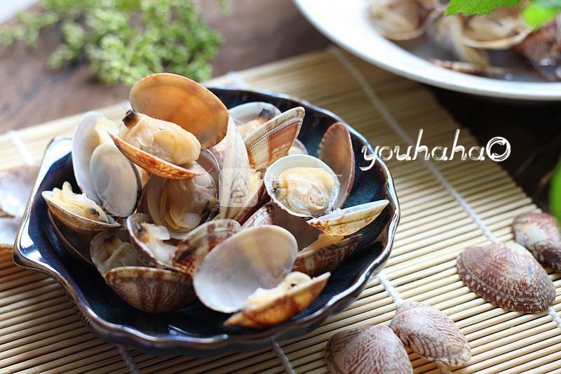 中国蛤蜊内部结构