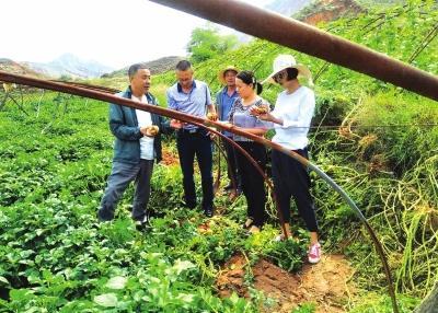 """农业培训让农户致富有""""路"""""""